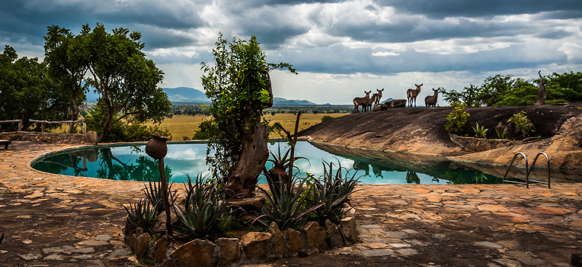 Apoka Safari Lodge